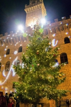 Christmas Tree in Montepulciano Tuscany Italy