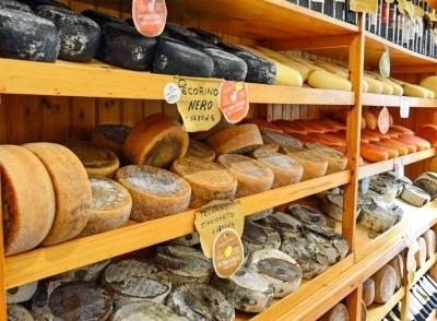 Cheese Tasting Pecorino di Pienza