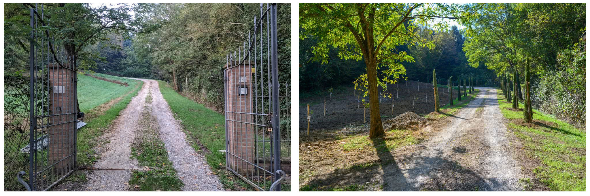 Fonte Martino Entrance Drive Before and After