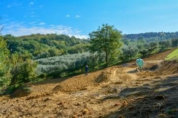 The Fonte Martino Organic Garden