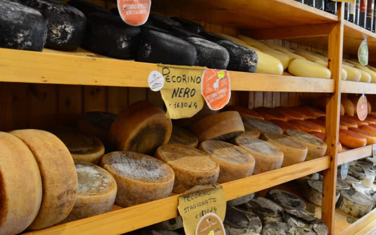 pecorino di pienza cheese tasting