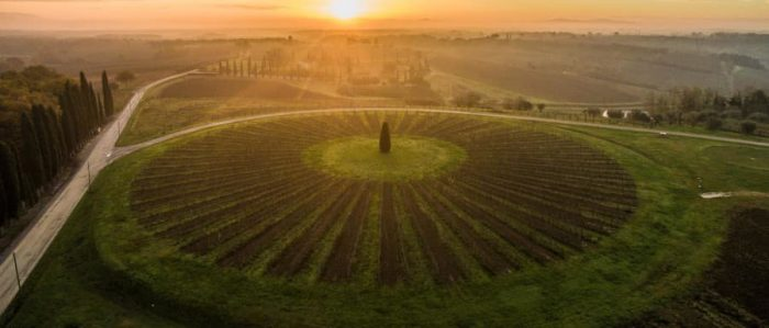 Avignonesi Grand Experience