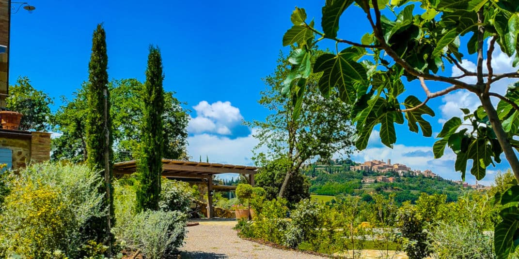 the road to montepulciano through the gardens at Fonte Martino bed and breakfast