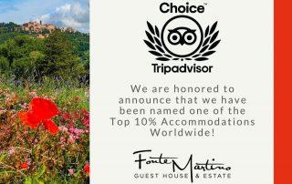 Fonte Martino Wins TripAdvisor Travelers Choice Award for 2020