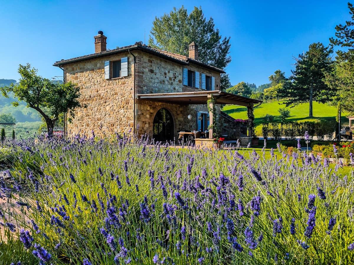 italiaanse-villa-accommodaties-bloeiende-paarse-lavendel